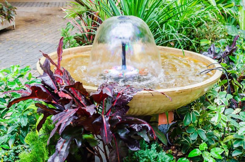 پمپ آب مخصوص حوض